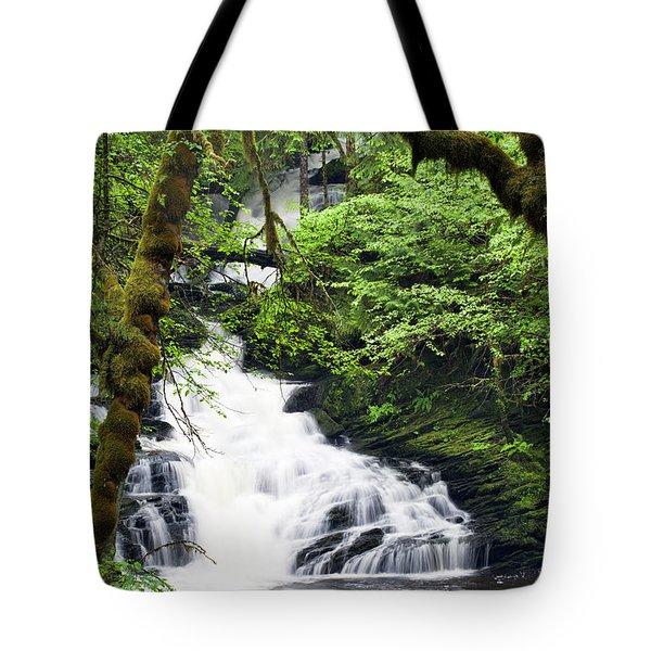 Lower Lunch Creek Falls Tote Bag