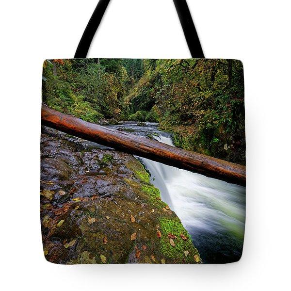 Lower Punch Bowl Falls Tote Bag by Jonathan Davison