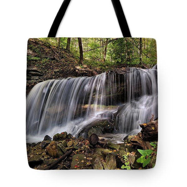Lower Tews Falls Tote Bag