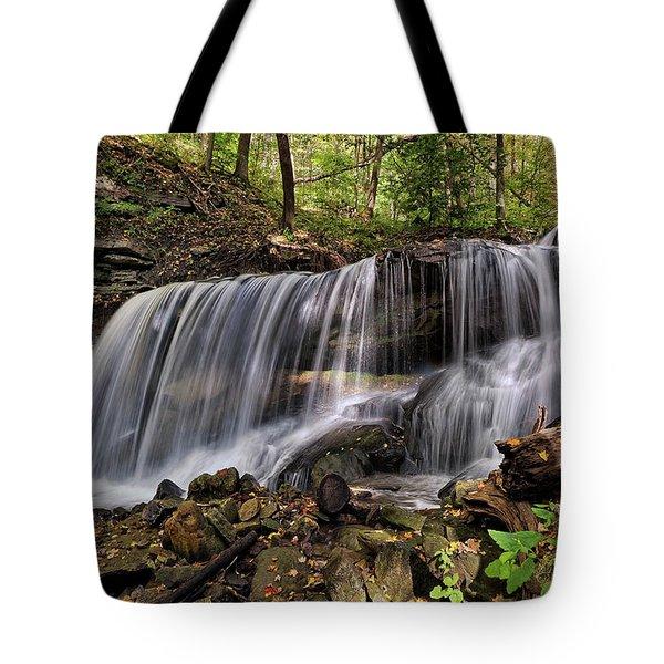 Lower Tews Falls Tote Bag