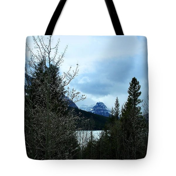 Lower Two Med Lake Through The Trees Tote Bag