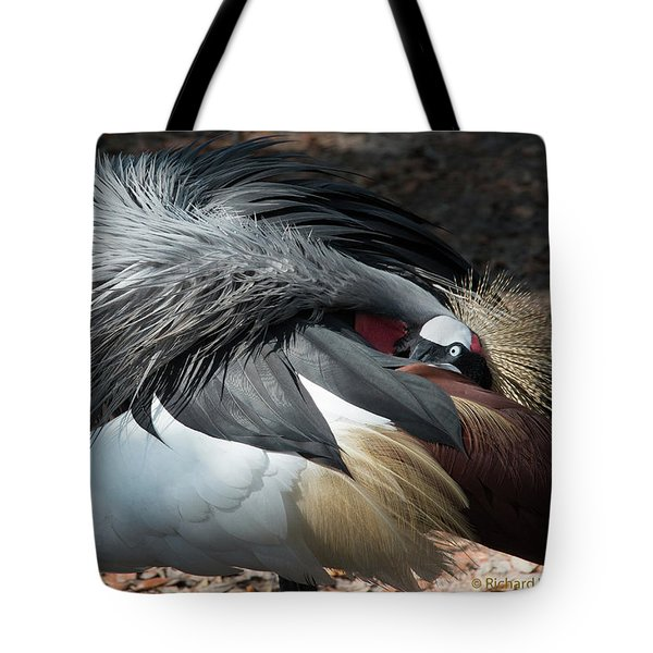 Tote Bag featuring the photograph Lowry Park Zoo Bird by Richard Goldman