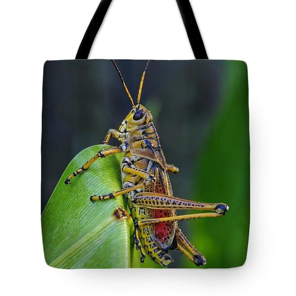 Lubber Grasshopper Tote Bag