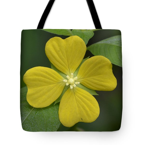 Lucky Four Leaf Flower Tote Bag