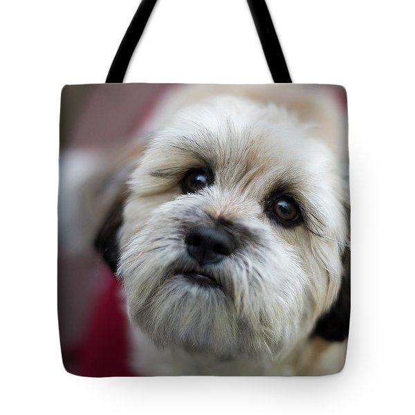 Lucy 2 Tote Bag