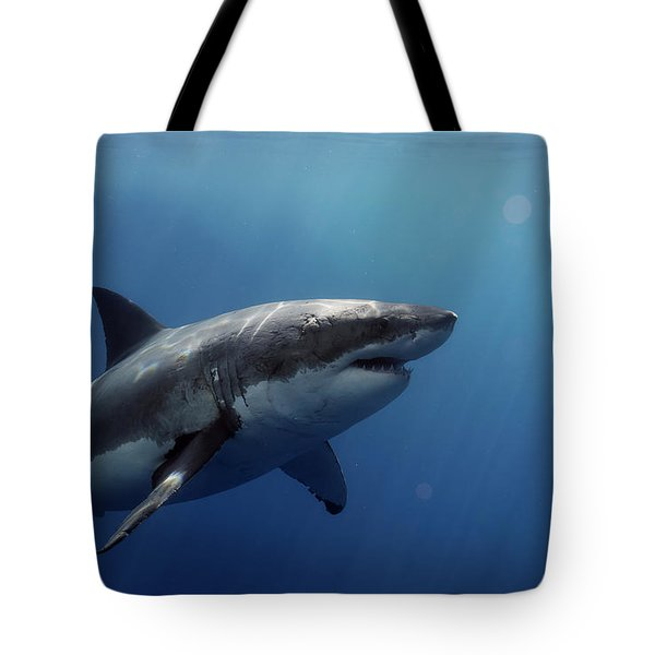 Lucy Posing At Isla Guadalupe Tote Bag by Shane Linke