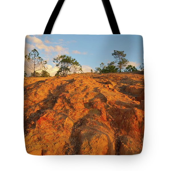 Ludo Red Sands. Algarve Tote Bag by Angelo DeVal