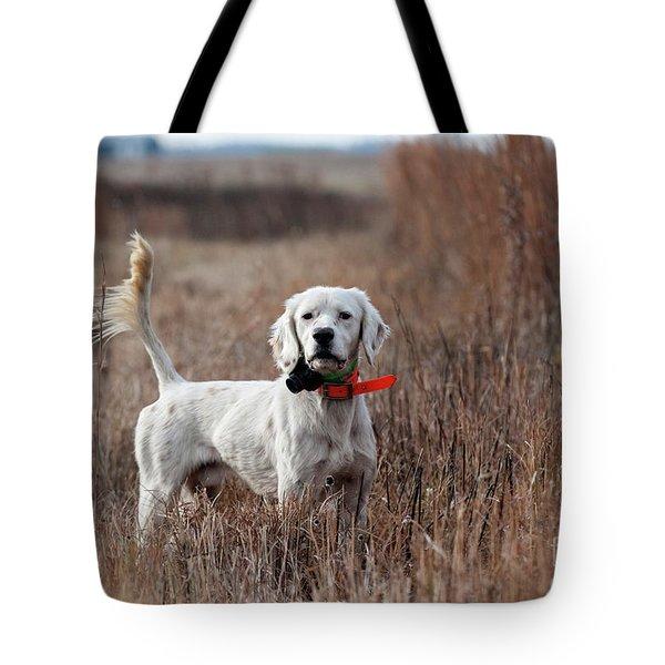 Luke - D010076 Tote Bag