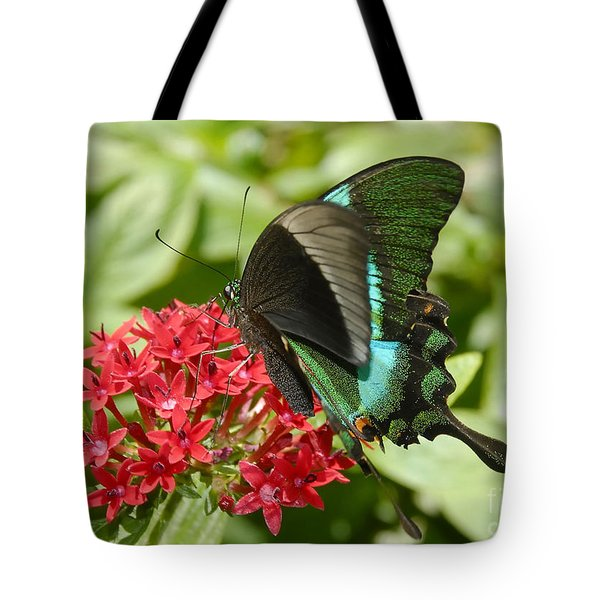 Luminescence Tote Bag by David Lee Thompson