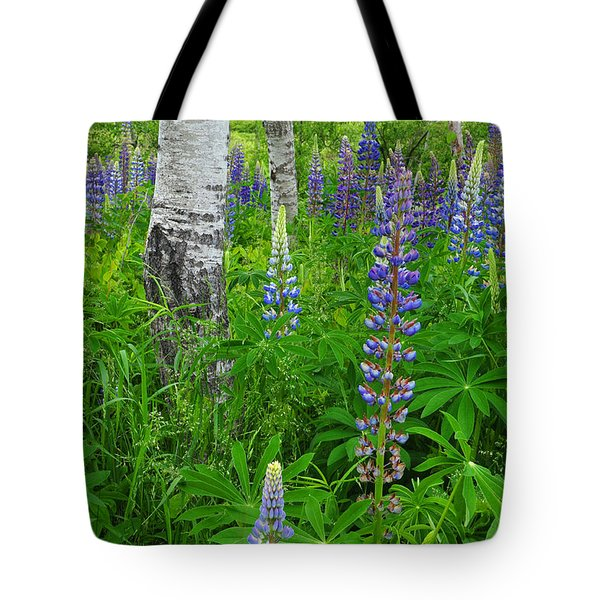 Lupine And Aspen - Maine Tote Bag
