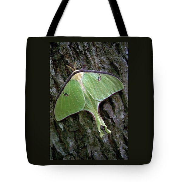 Tote Bag featuring the photograph Luna Moth by Marie Hicks