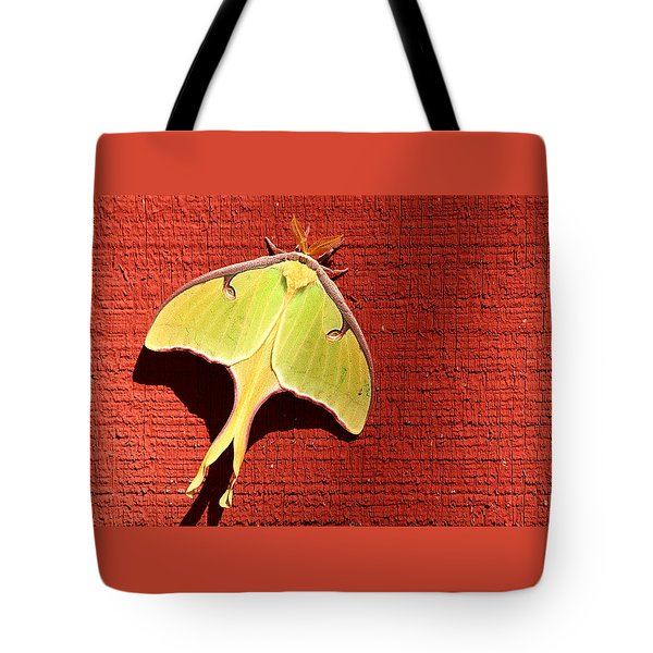 Luna Moth On Red Barn Tote Bag by Sheila Brown