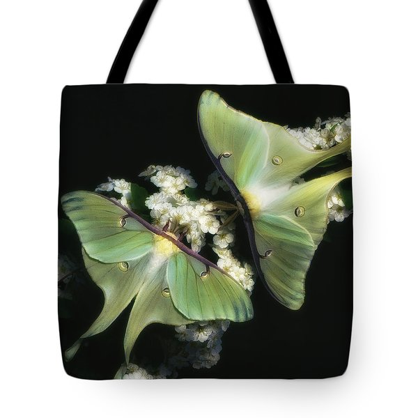 Luna Moths Tote Bag