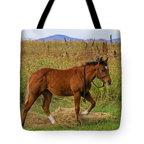 Lunch Break Tote Bag