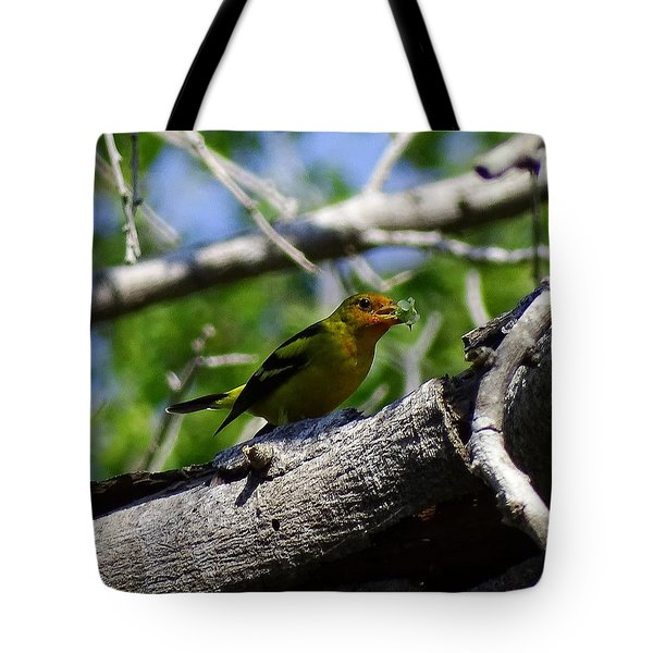 Tote Bag featuring the photograph Lunch Time On Limb by Cindy Charles Ouellette