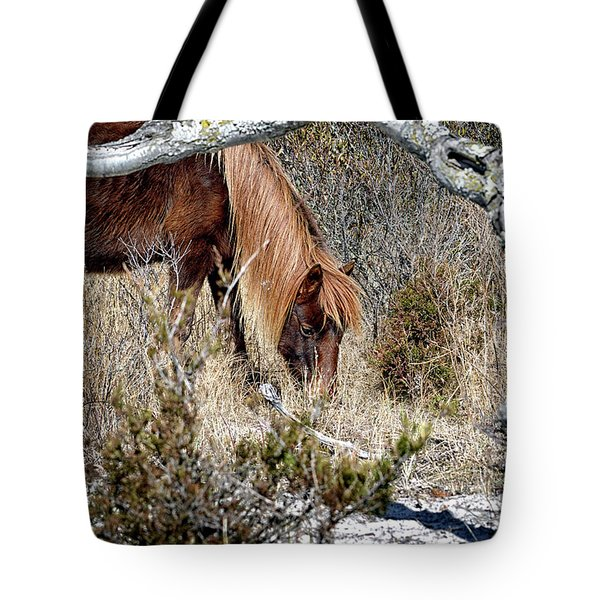 Tote Bag featuring the photograph Lunchtime For Gokey Go-go Bones by Assateague Pony Photography