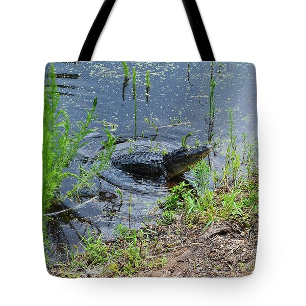 Lunging Bull Gator Tote Bag by Warren Thompson