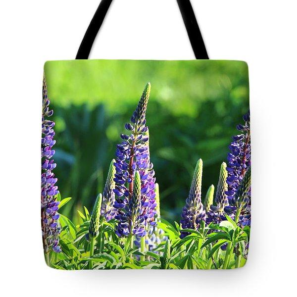 Lupine Flowers Stony Brook New York Tote Bag