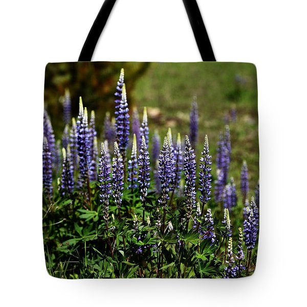 Lupine In Montana 2 Tote Bag