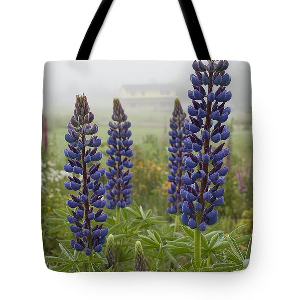 Lupine In The Fog Tote Bag