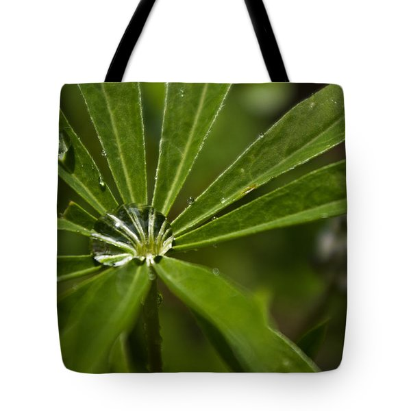 Lupine Leaf Tote Bag