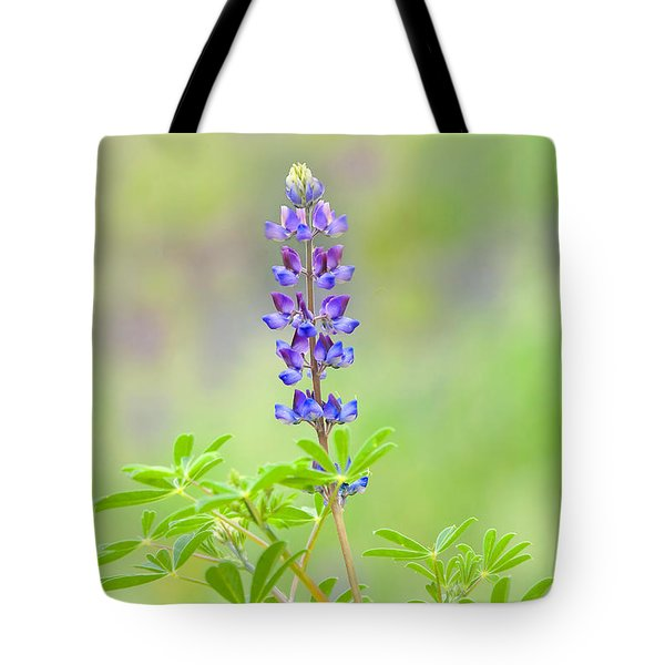Tote Bag featuring the photograph Lupine by Ram Vasudev