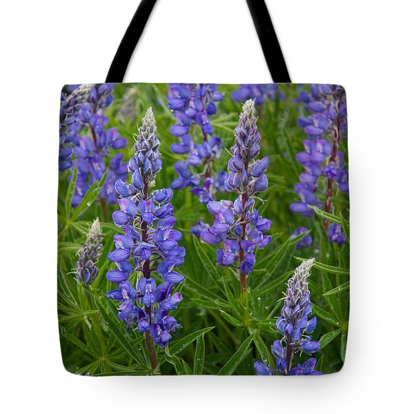 Tote Bag featuring the photograph Lupine Wildflowers by Aaron Spong