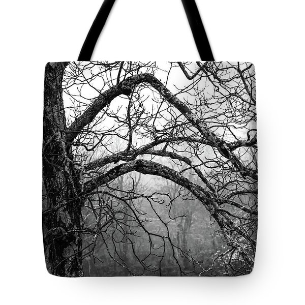 Tote Bag featuring the photograph Lure Of Mystery by Karen Wiles