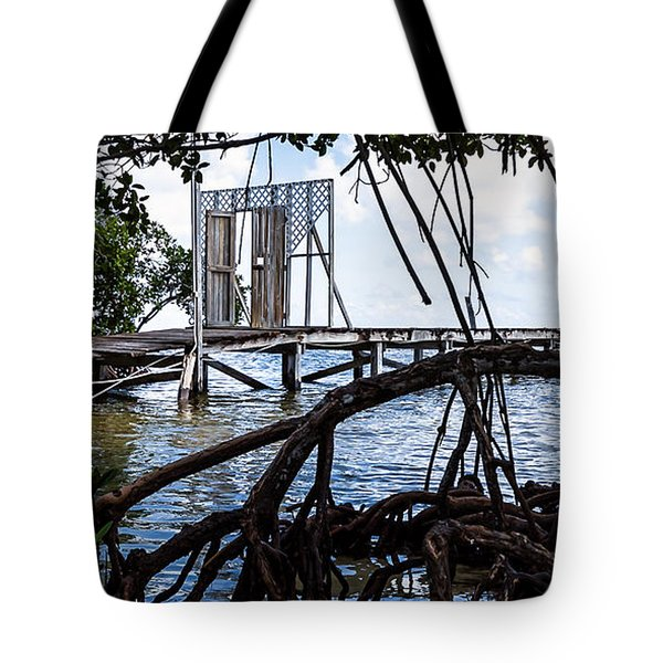 Lurking In The Shadows Tote Bag