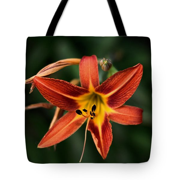 Luscious Tiger Lily Tote Bag by Aliceann Carlton