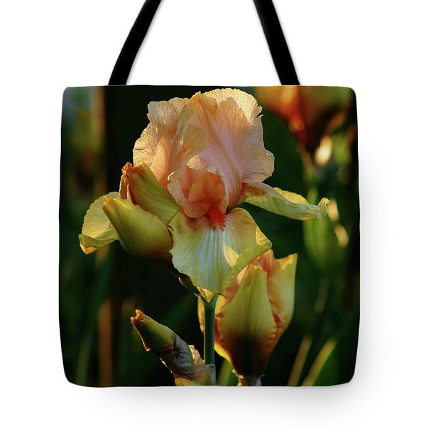Luxurious Nature 6764 H_2 Tote Bag