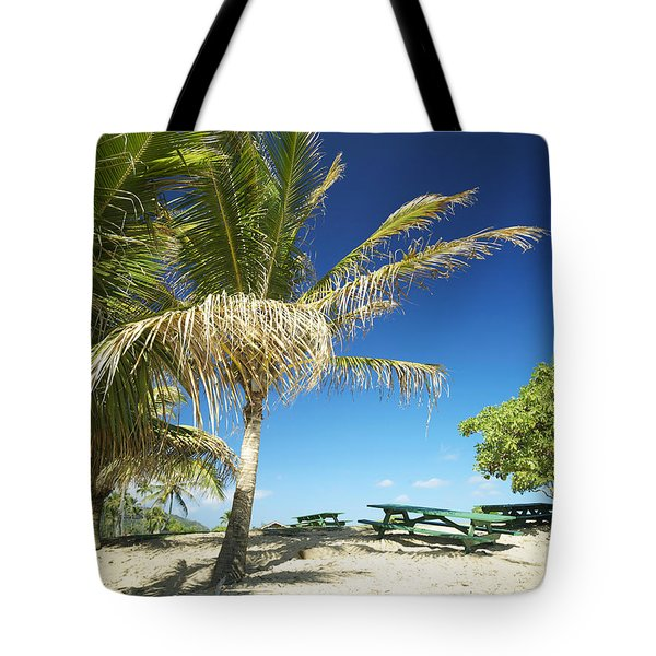 Lydgate Beach On Kauai Tote Bag by Kicka Witte - Printscapes