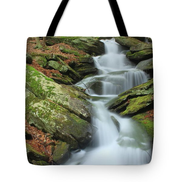 Lynnes Falls New England National Scenic Trai Tote Bag by John Burk