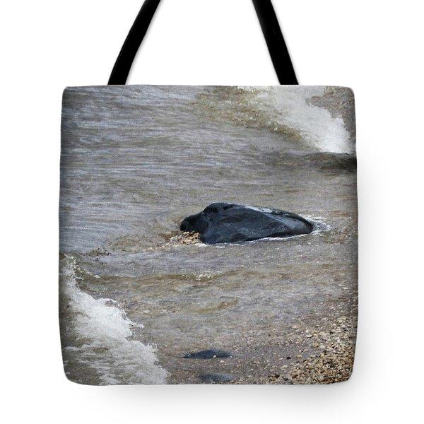M Landscapes Collection No. L245 Tote Bag