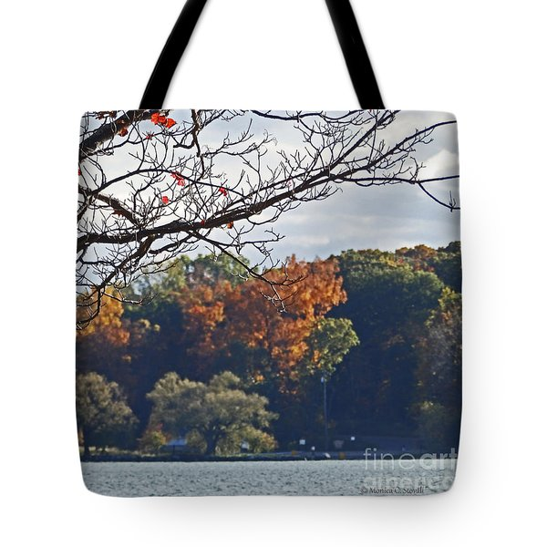 M Landscapes Fall Collection No. Lf51 Tote Bag