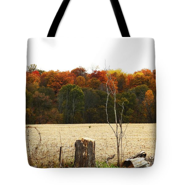 M Landscapes Fall Collection No. Lf66 Tote Bag
