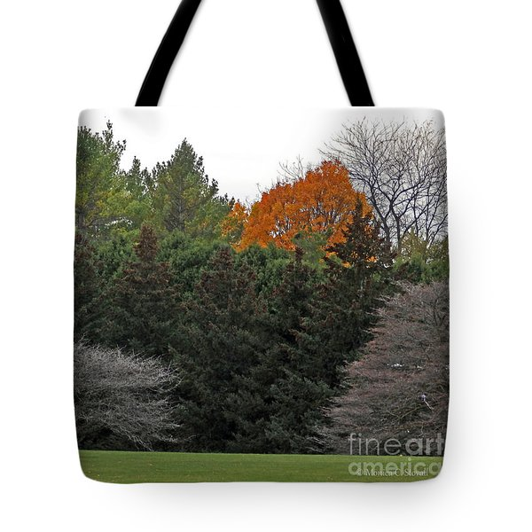 M Landscapes Fall Collection No. Lf67 Tote Bag