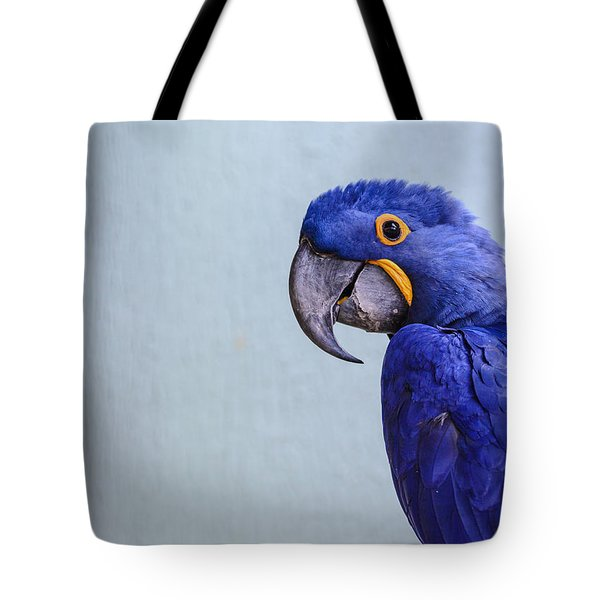 Macaw Tote Bag by Daniel Precht