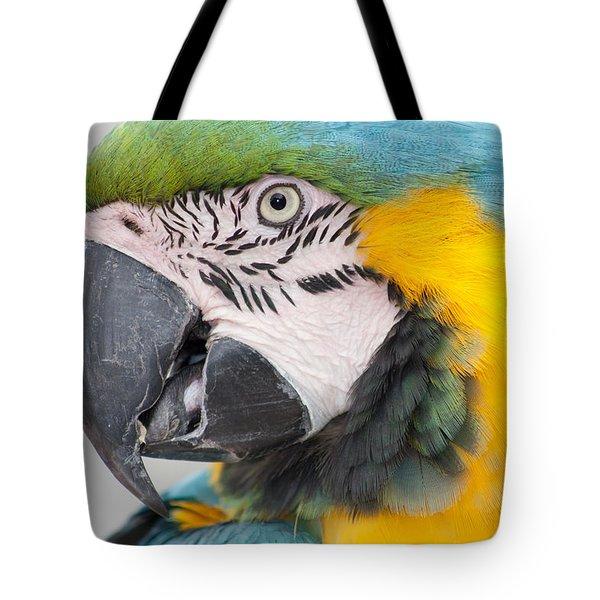 Macaw Head Plume Beauty Tote Bag