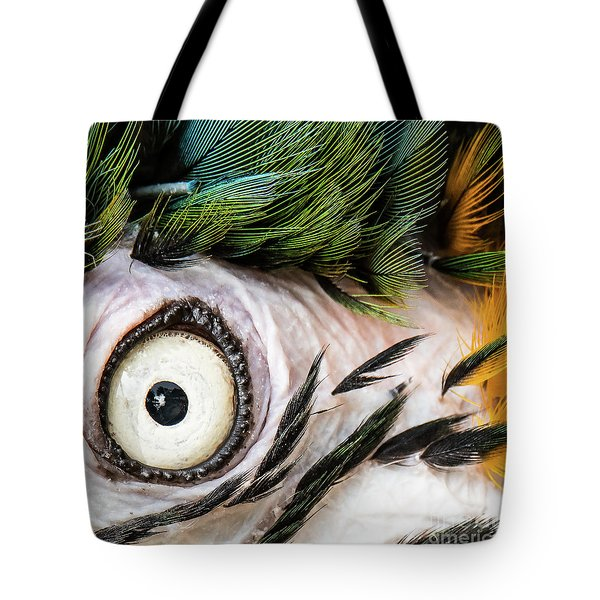 Macaw Up Close And Personal Tote Bag