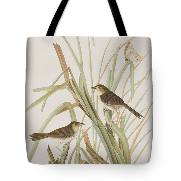 Macgillivray's Finch  Tote Bag by John James Audubon