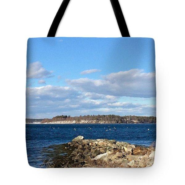 Mackworth Island Falmouth Maine Tote Bag