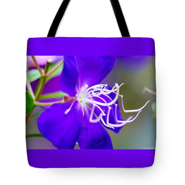 Macro Clematis Tote Bag by Warren Thompson