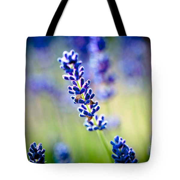 Macro Lavander Flowers In Lavender Field Artmif Tote Bag