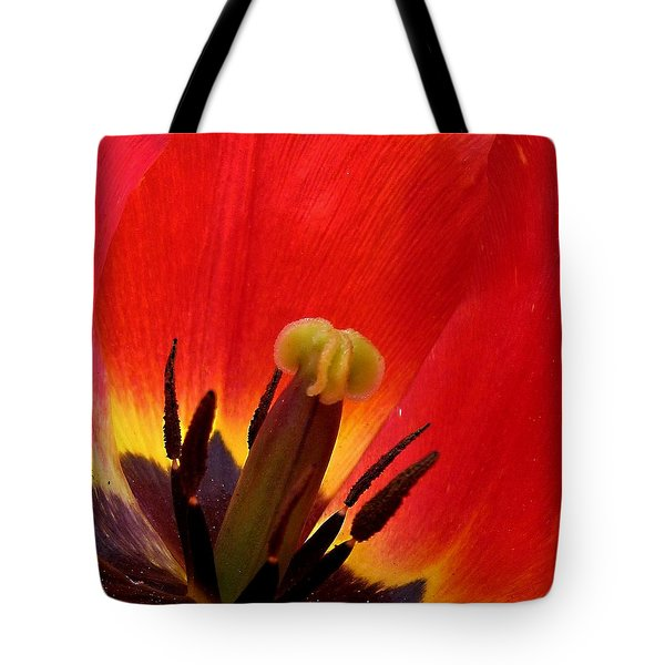 Macro Of Tulip Tote Bag by Mikki Cucuzzo