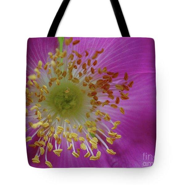 Macro Rosehip Bloom Tote Bag