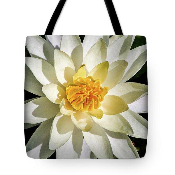 Macro Water Lily Tote Bag