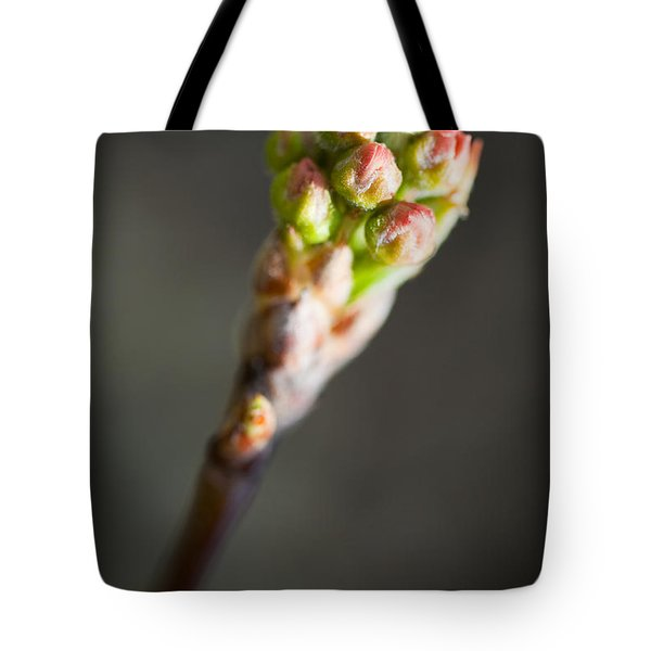 Macro Young Crabapple Tree Blossom Tote Bag by Sharon Dominick