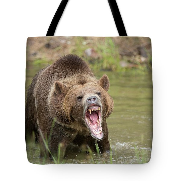 Mad Bear Tote Bag