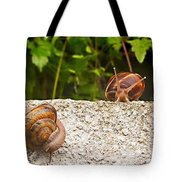 Madam Let Me Introduce Myself Tote Bag